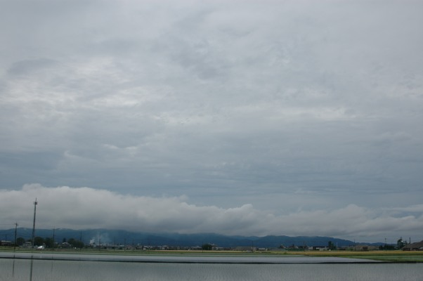 不透明雲 変種 雲分類